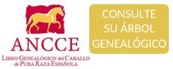 Consulte_Libro_Genealogico_PRE_ANCCE